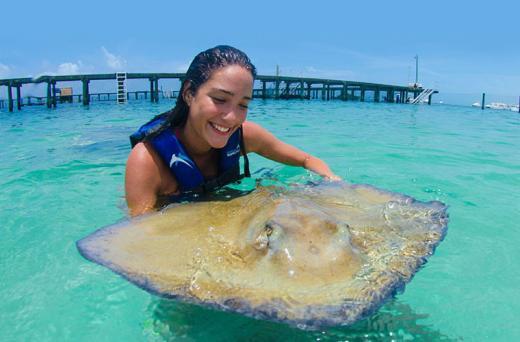 Encuentro con Rayas & Tiburones