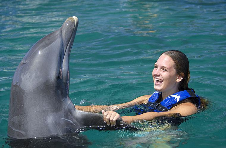 Dolphin Funtastic Excursion in Punta Cana