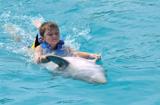 Dolphin Swim Adventure en Puerto Vallarta
