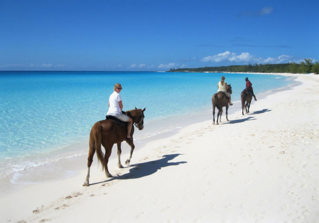 Horseback Riding Tour in Punta Cana