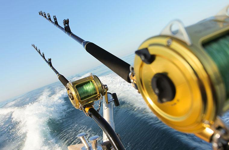 Crazy Gator Sport Fishing Tour in Punta Cana