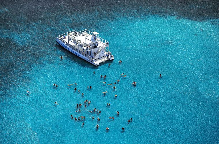 Excursión a Seaquarium Punta Cana